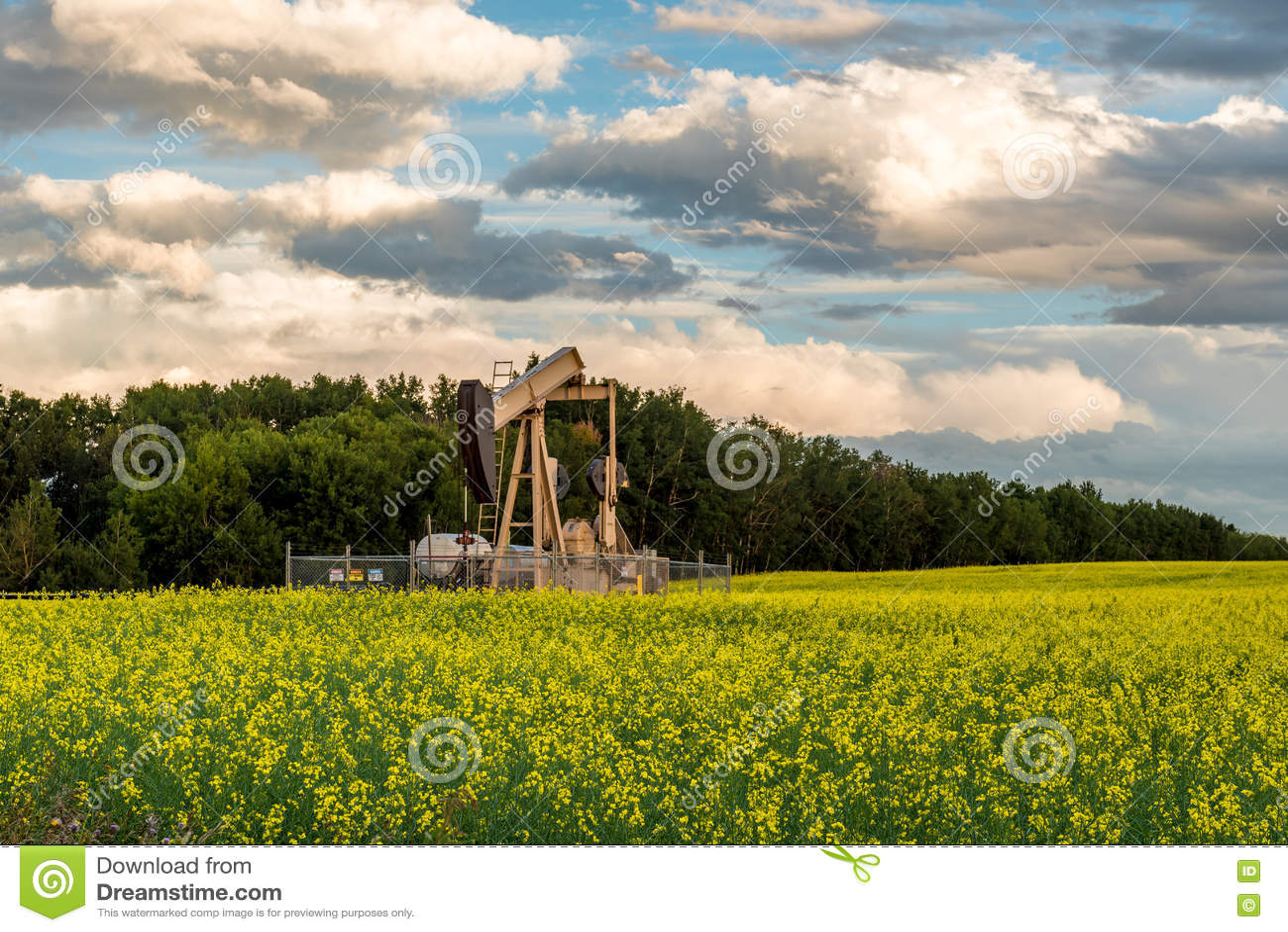 Oil well pump jack