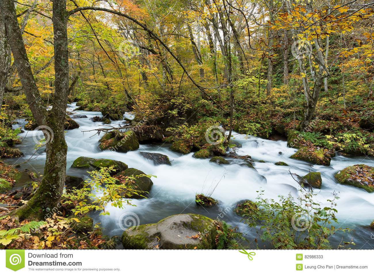 Oirase Stream in autumn