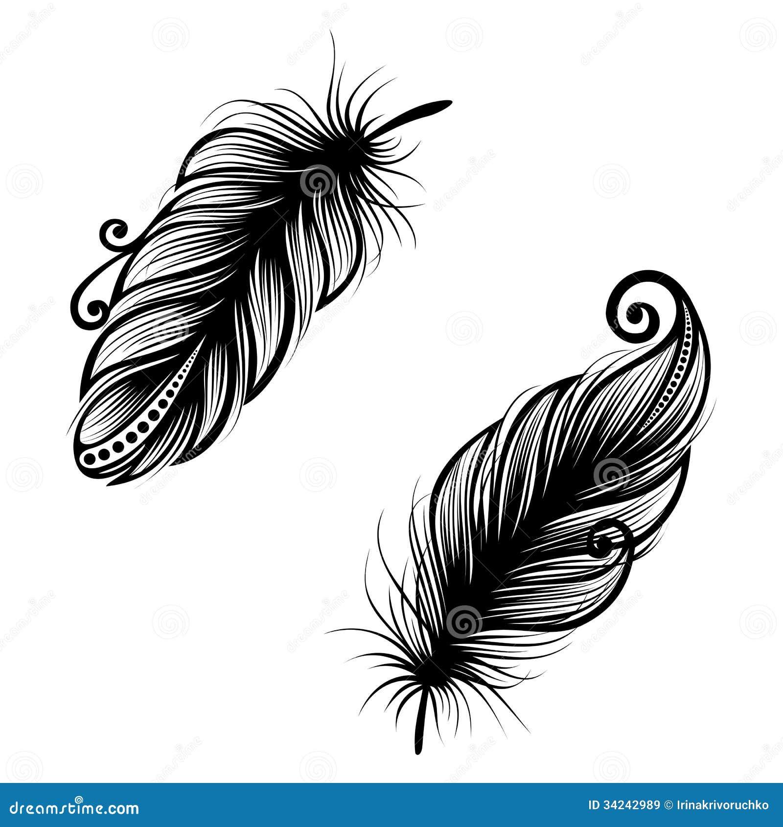 Oiseau Abstrait De Plume Illustration De Vecteur Illustration Du