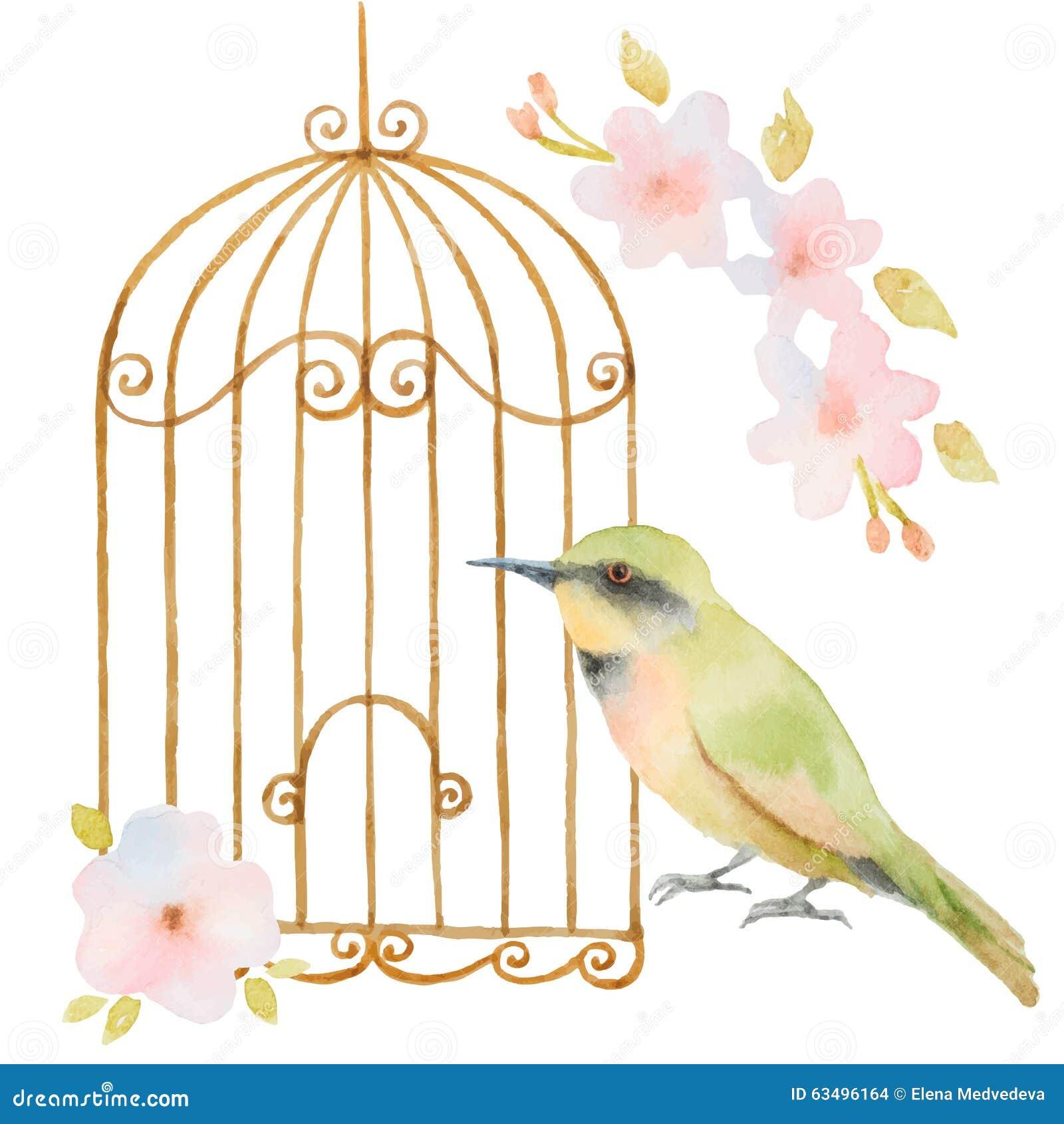 Oiseau cage et fleurs d 39 aquarelle illustration de vecteur illustration du d coration - Dessin oiseau en cage ...
