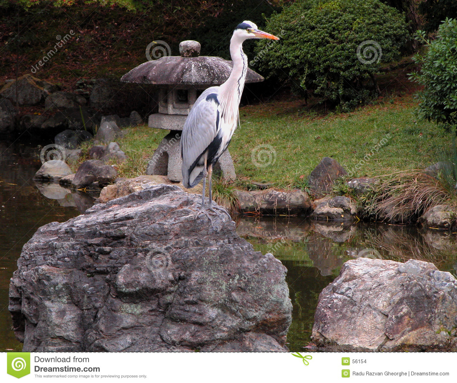 Oiseau dans le jardin en pierre images stock image 56154 for Oiseau decoratif jardin