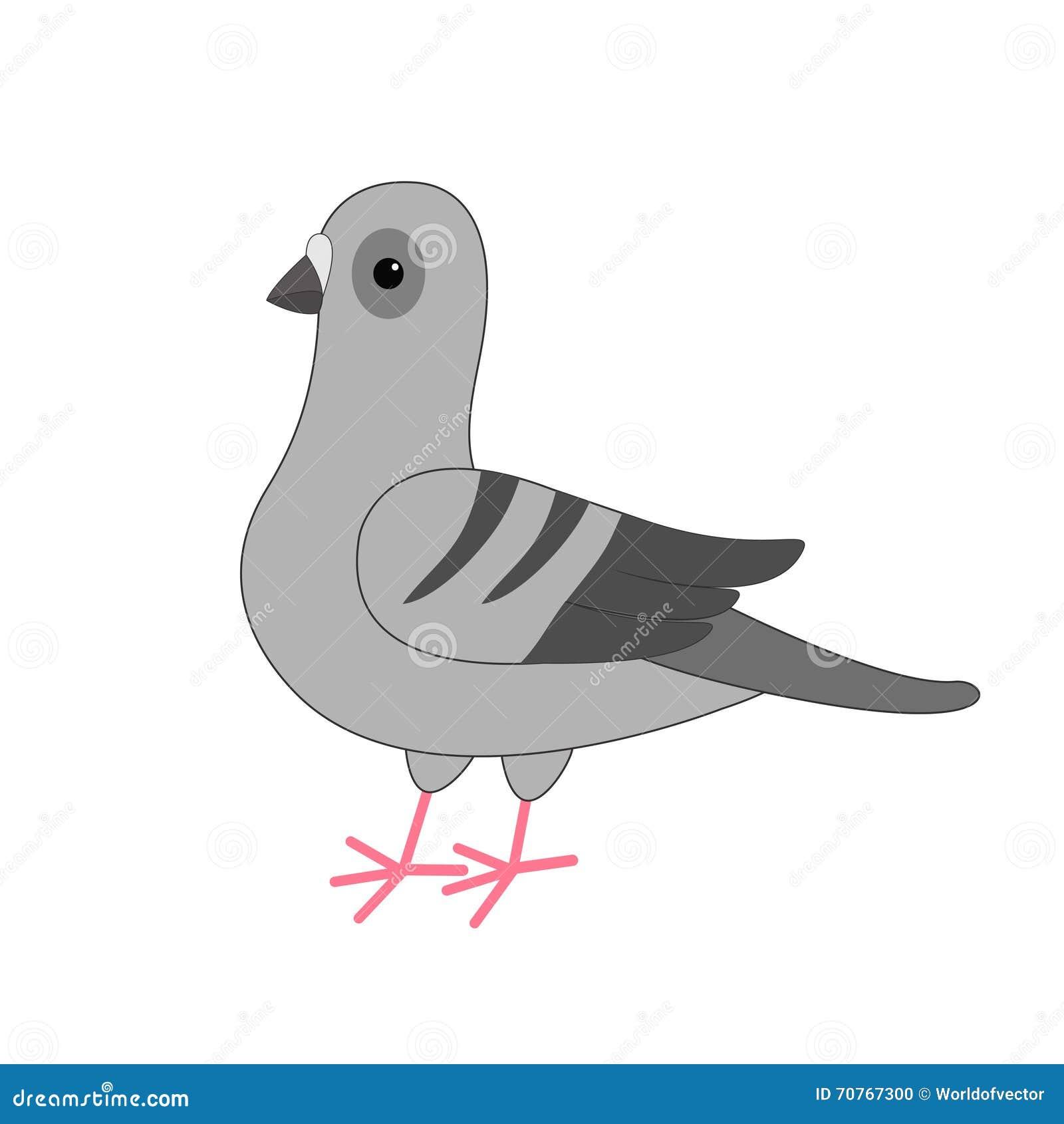 Oiseau de colombe personnage de dessin anim de gray pigeon cute sur le fond blanc d 39 isolement - Dessin pigeon ...