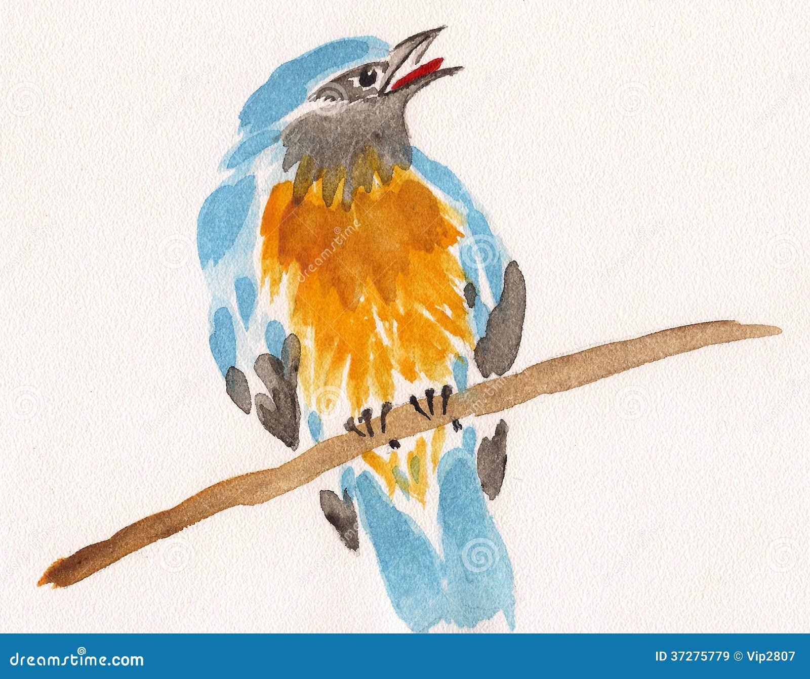 Oiseau de dessin d 39 aquarelle sur une branche images libres de droits image 37275779 - Dessin de oiseau ...