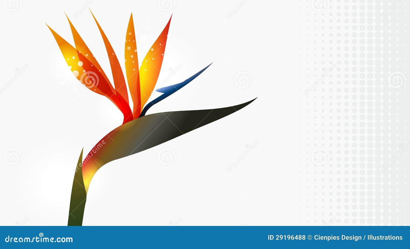 oiseau de fin de fleur de paradis vers le haut illustration de vecteur image 29196488. Black Bedroom Furniture Sets. Home Design Ideas