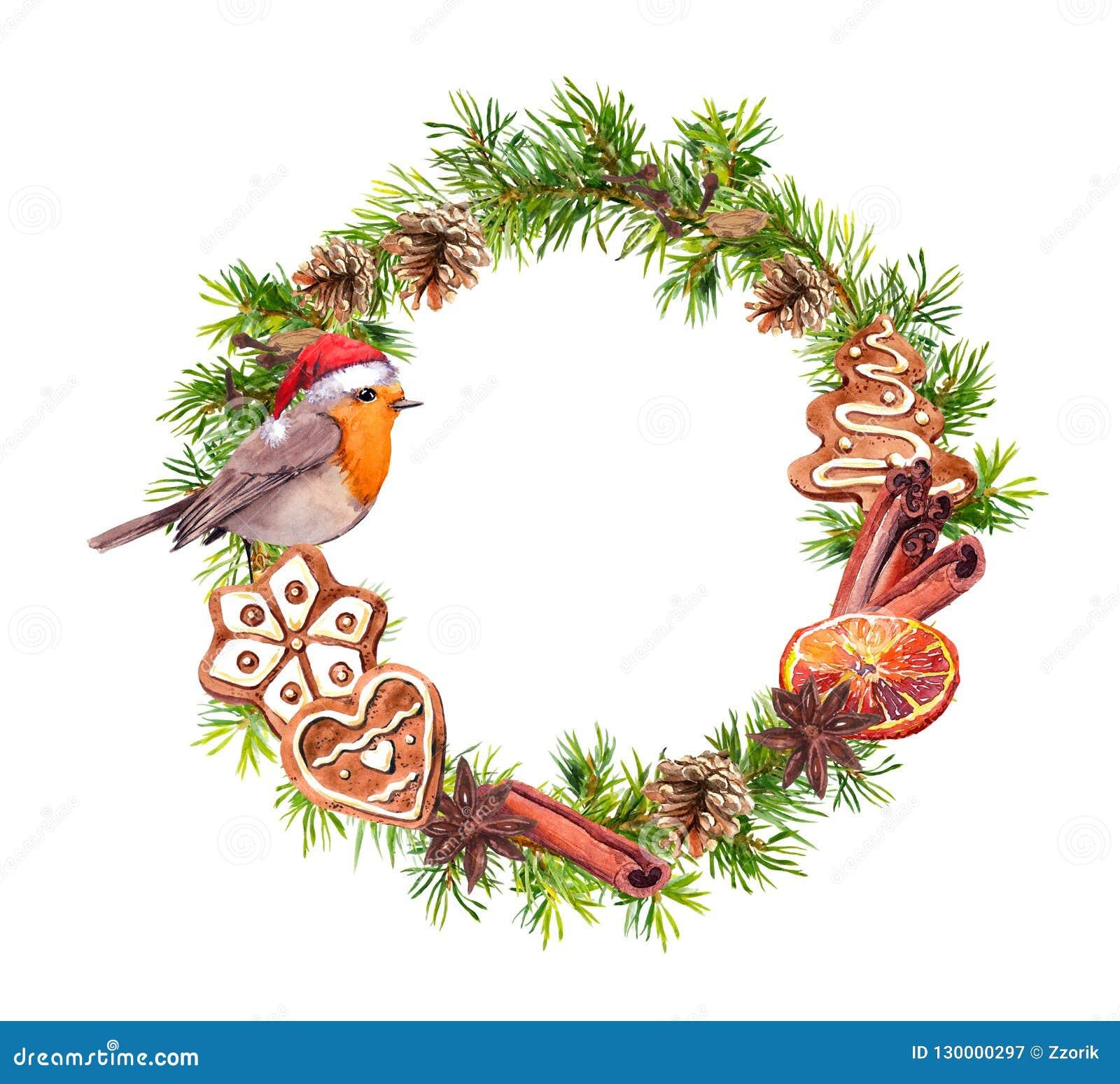 Oiseau de Robin dans le chapeau rouge de vacances, biscuits de gingembre, cinamon, orange Guirlande de Noël avec des branches d a