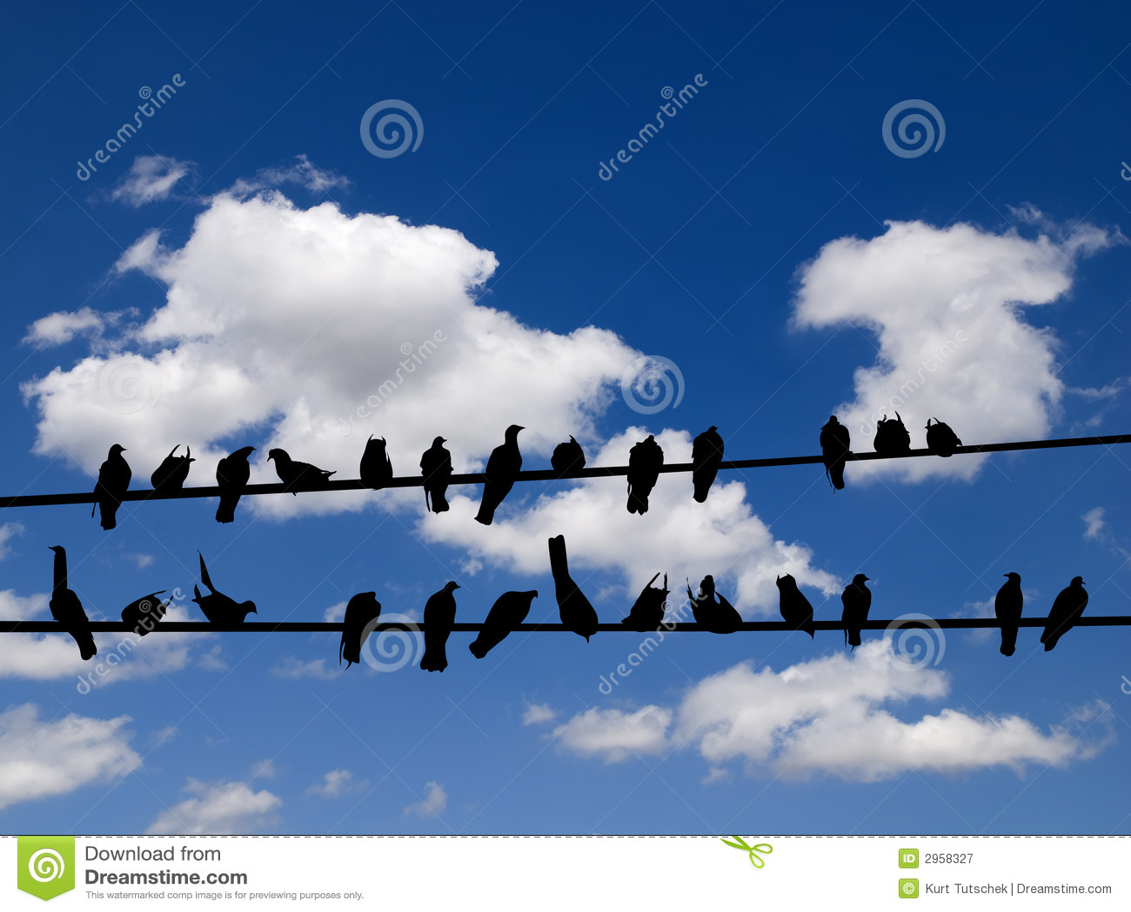 oiseaux sur un fil photographie stock libre de droits. Black Bedroom Furniture Sets. Home Design Ideas