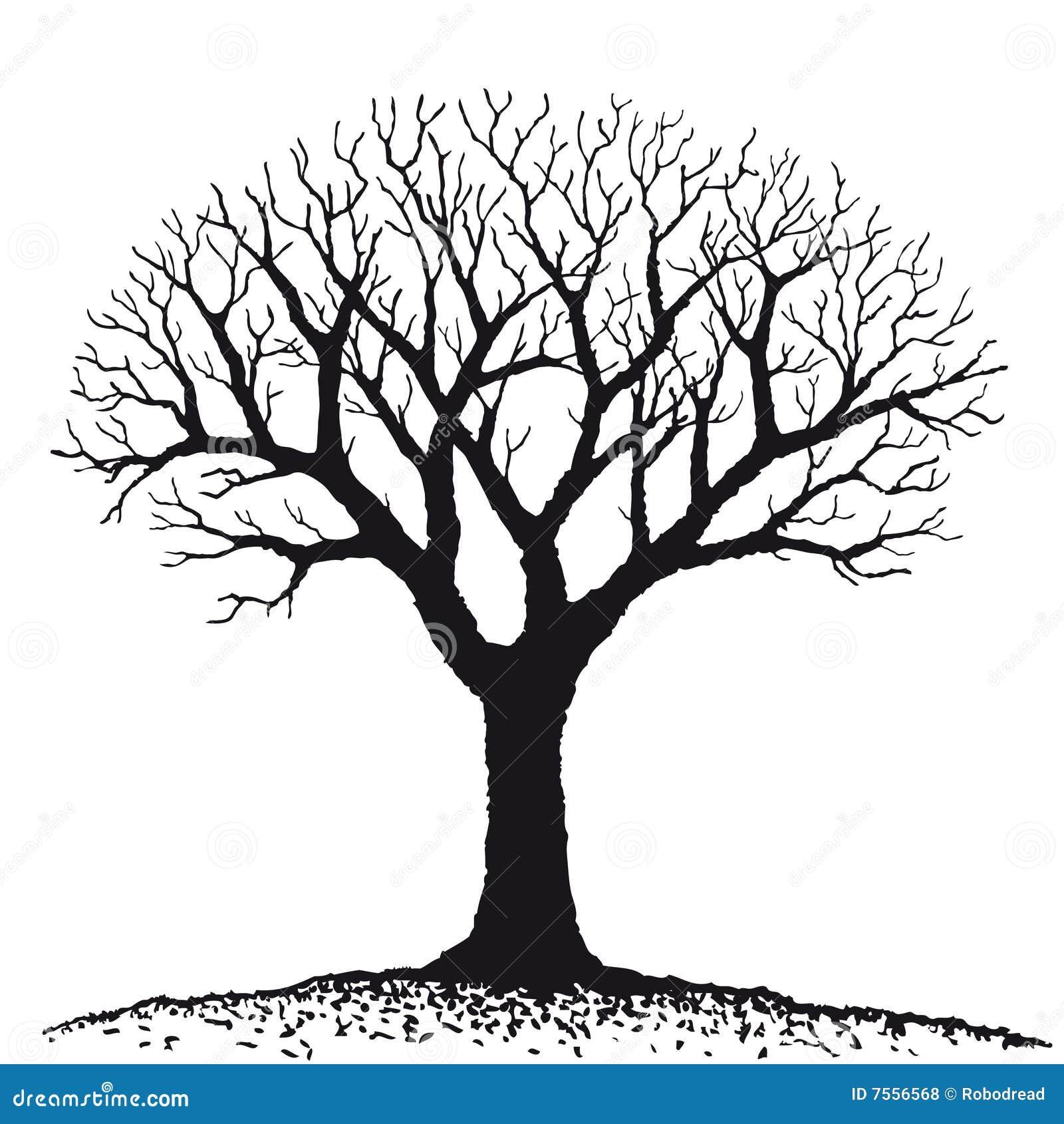 Oisolerad treevektor