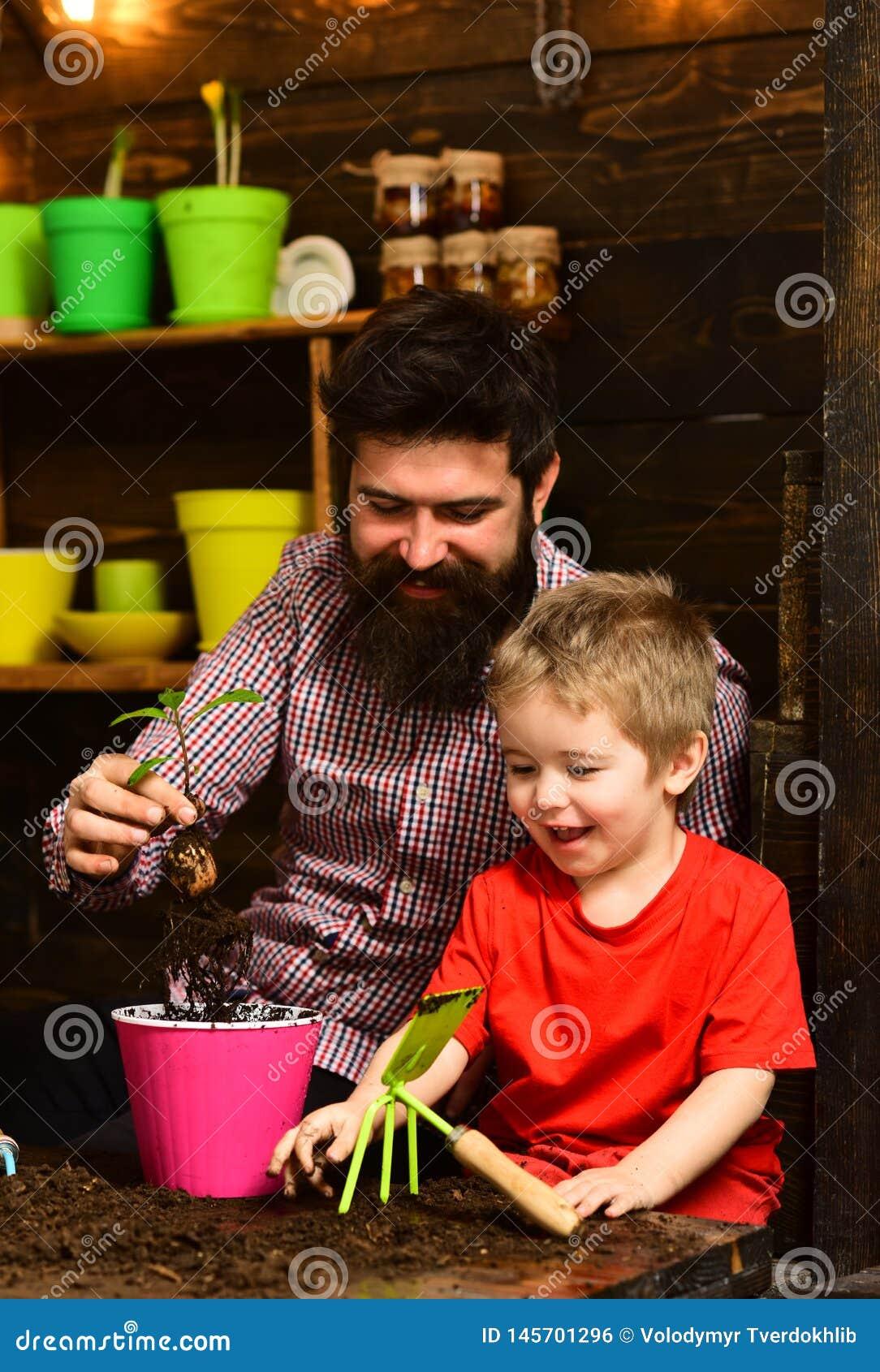 Ojciec i syn Rodzinny dzie? charcica Brodata m??czyzny i ch?opiec dziecka mi?o?ci natura szcz??liwe ogrodniczki z wiosn?