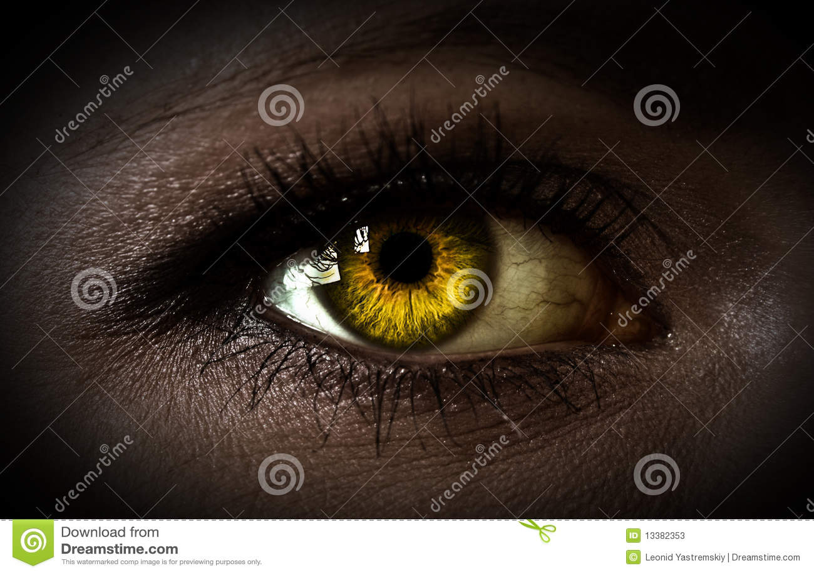 Ojo de la mujer del misterio