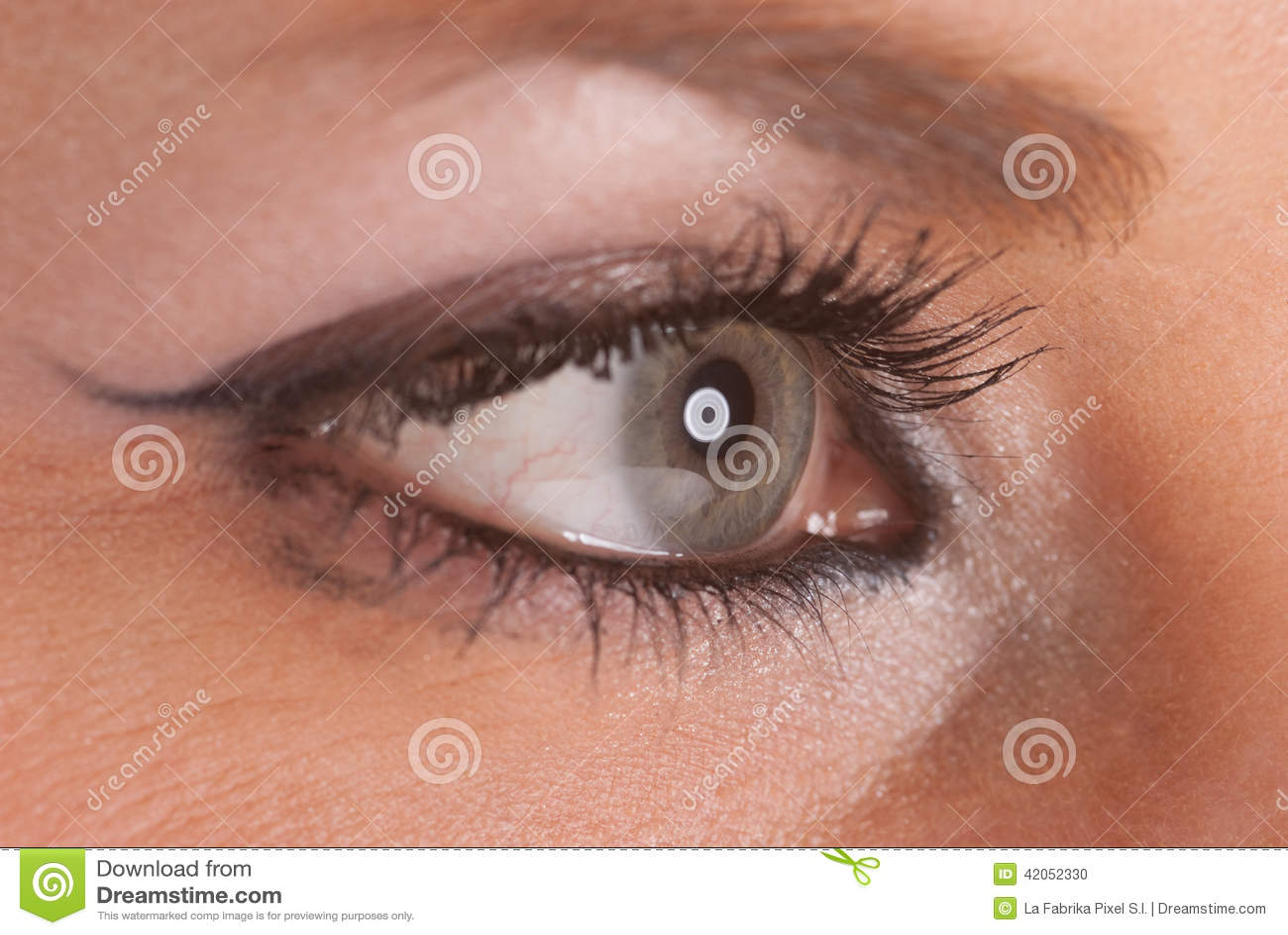 ojo en perfil foto de archivo imagen de rimel  joven eyeball vector free eyeball vector outline