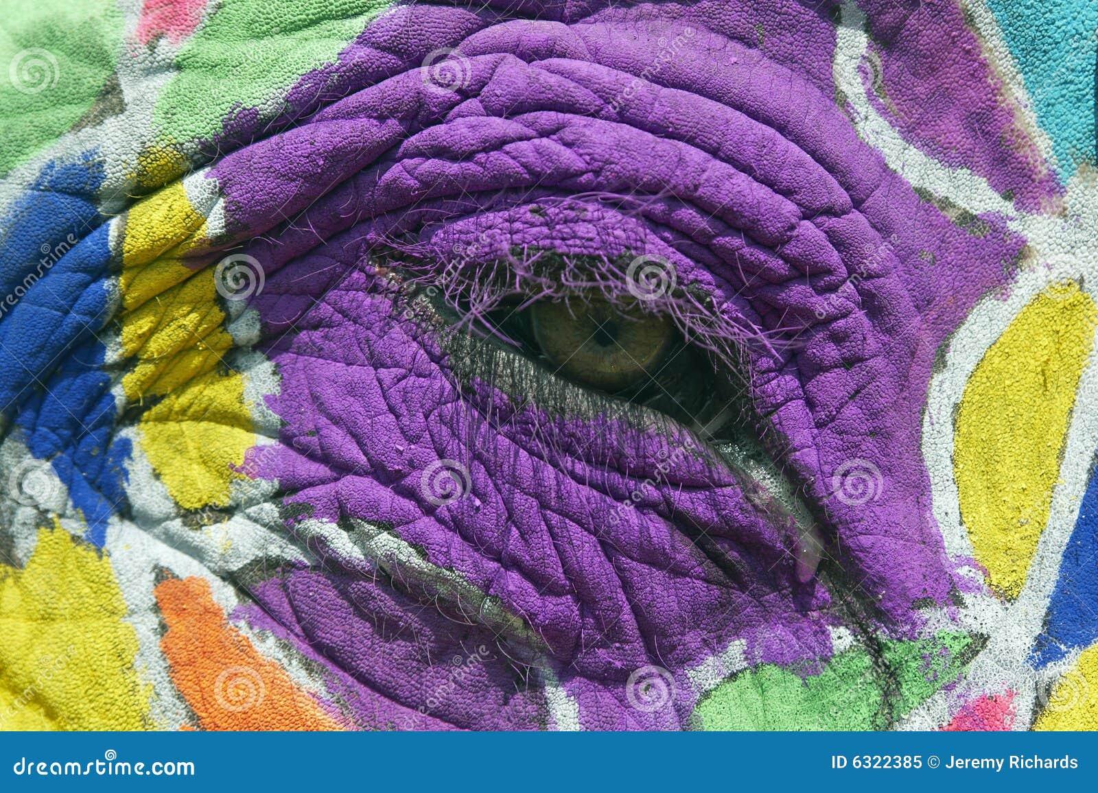Ojo Pintado Del Elefante Imagen De Archivo Imagen De Asia 6322385