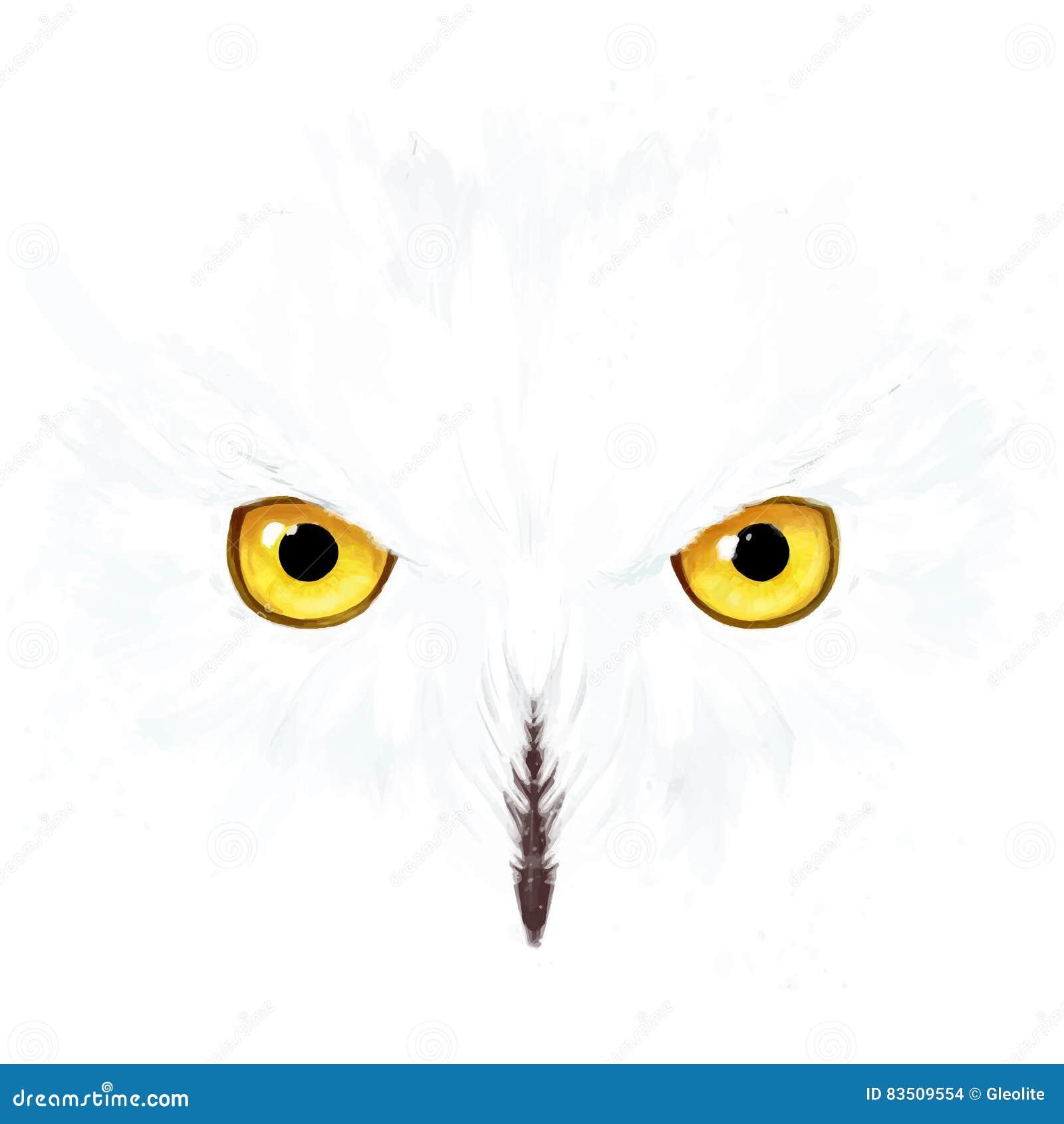 Ojos y cara del búho Nevado