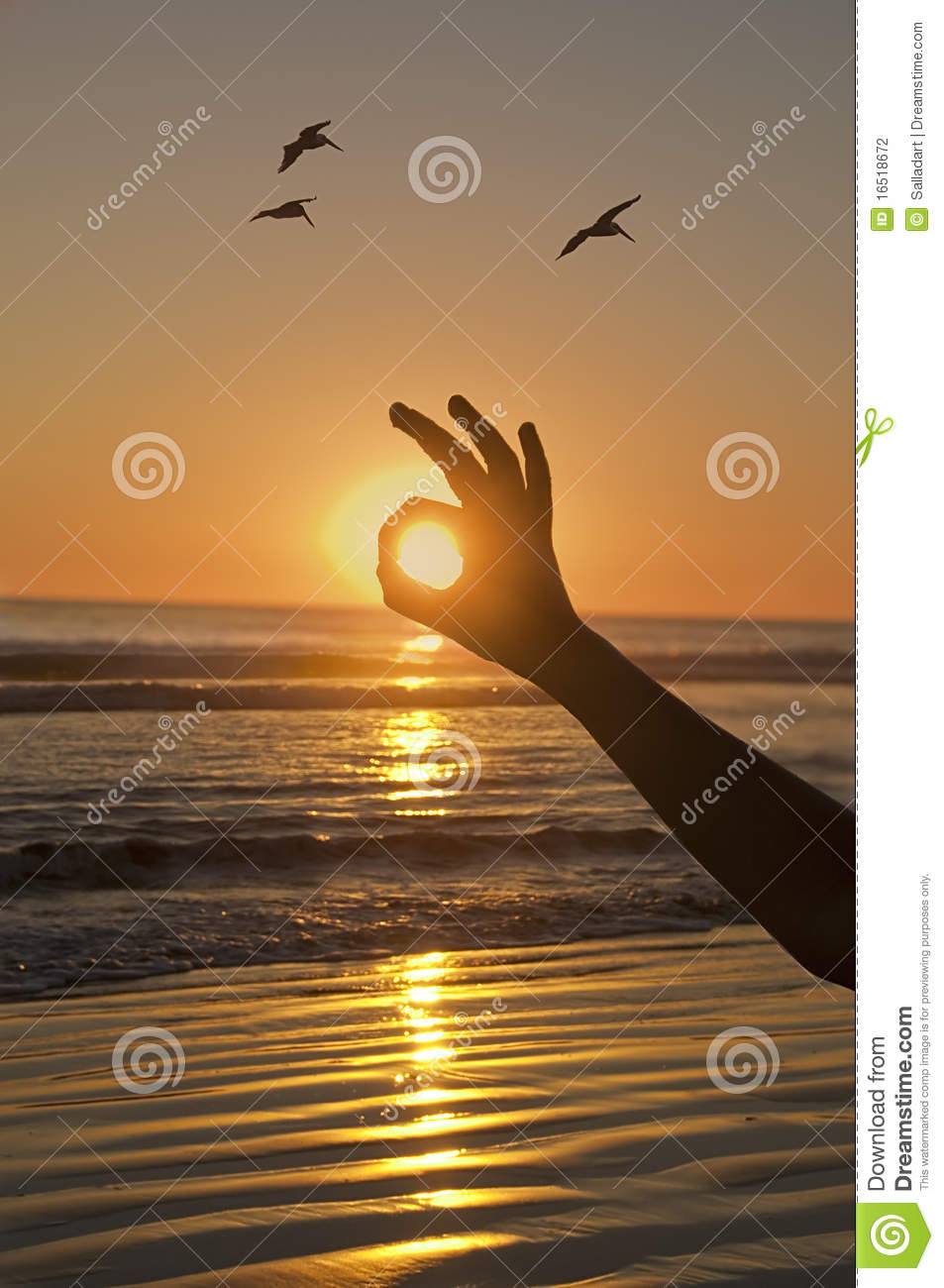Ok Sunset Stock Photo Image Of Evening Agreement Hand 16518672