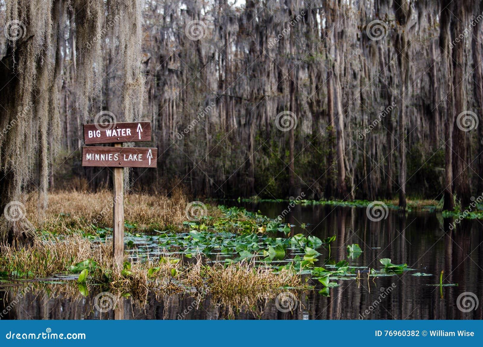 Download Okefenokee Swamp Sign stock photo. Image of hike, canoe - 76960382
