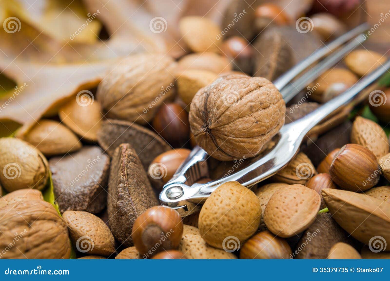 Okkernoot en nut-cracker