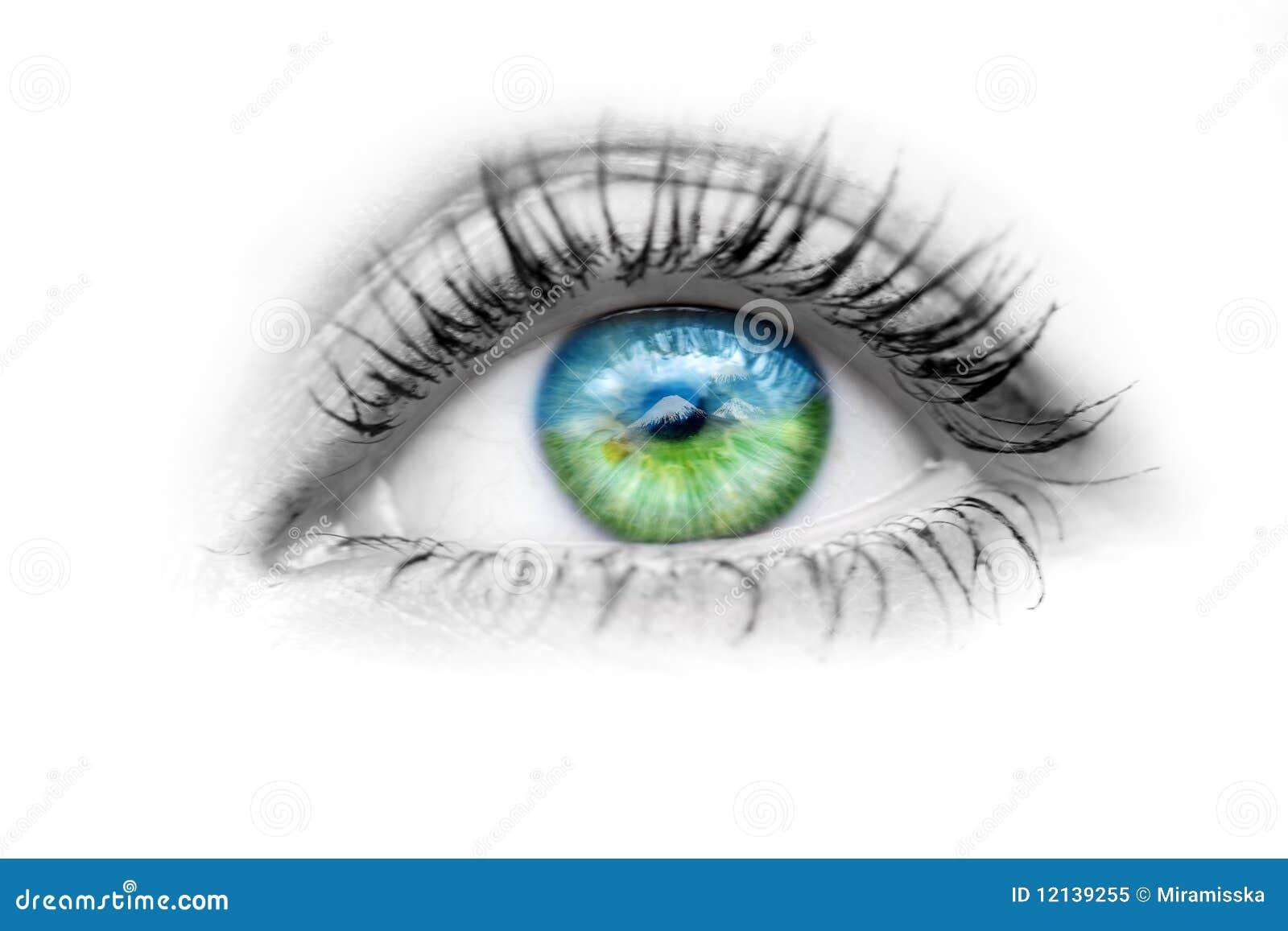 Oko przygląda się naturę