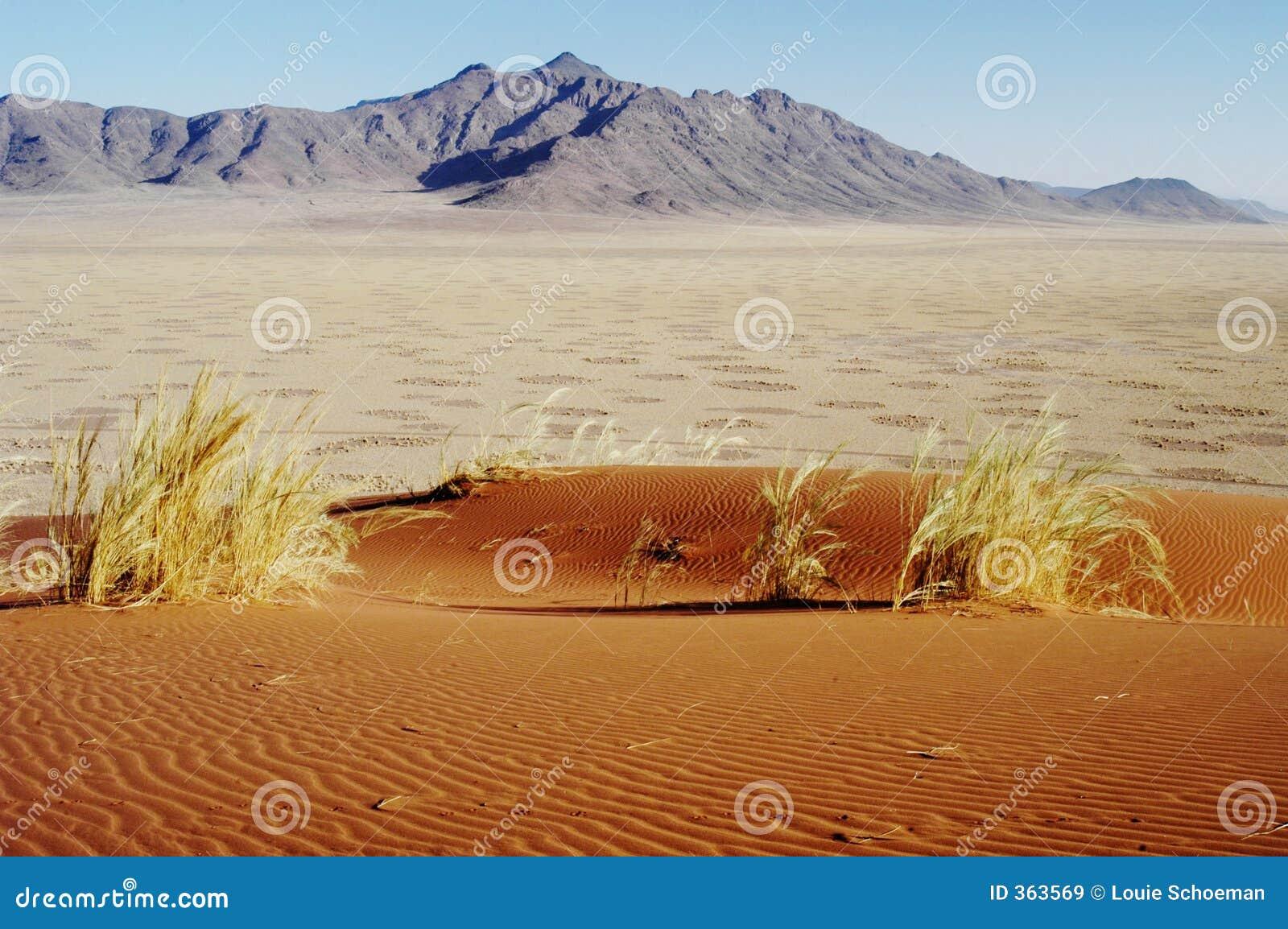 Okręgi wróżkę dezerterują Namibia