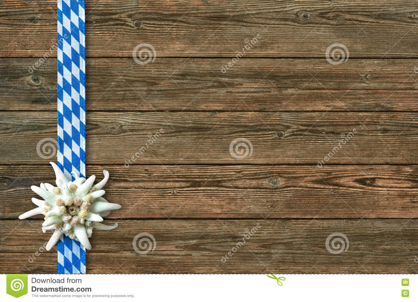 Oktoberfest Background With Edelweiss - 274.4KB