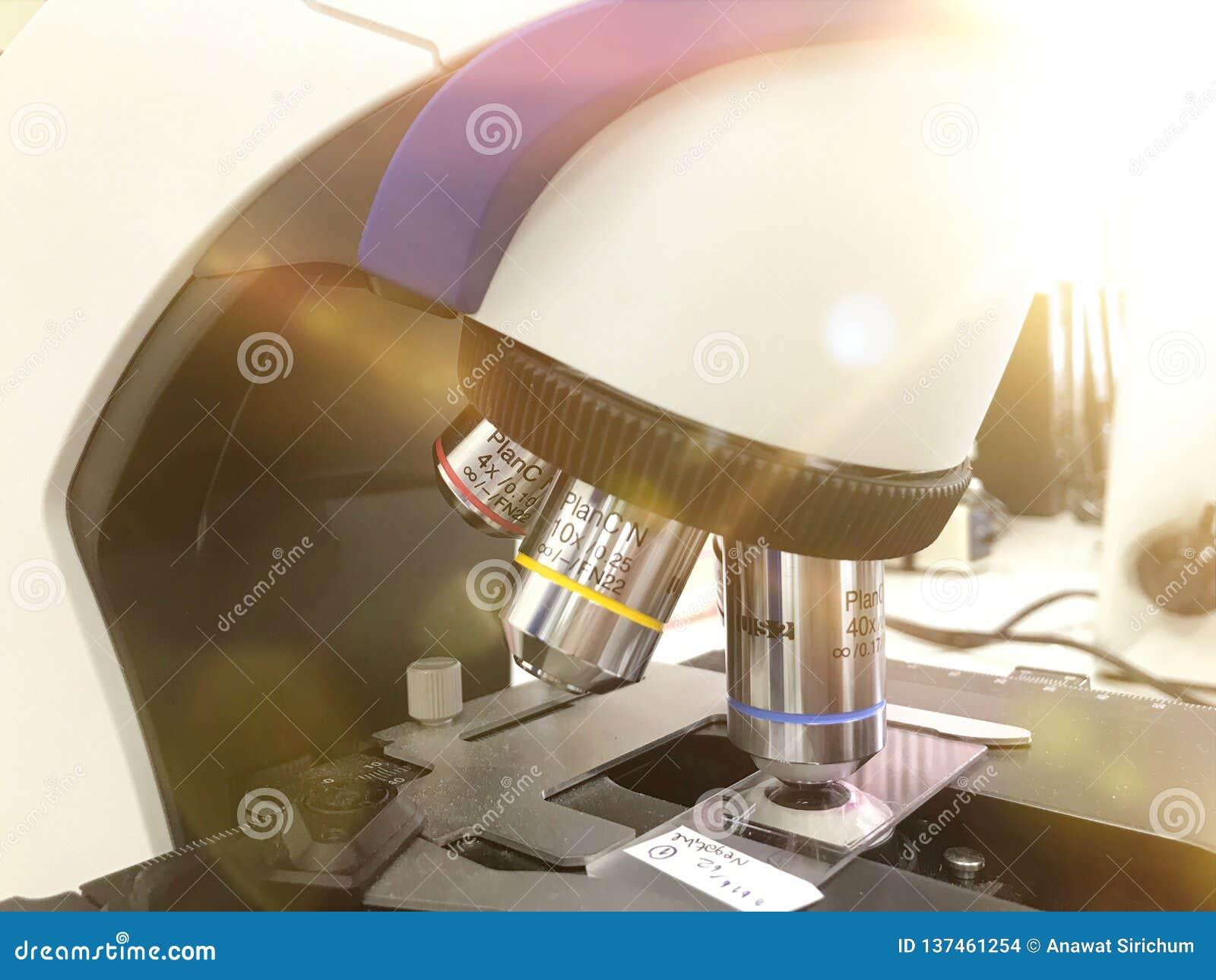 Okulistyczny mikroskop nauka i laborancki wyposażenie - Dla prowadzić planuję wewnątrz, badawczy eksperymenty, edukacyjne demonst