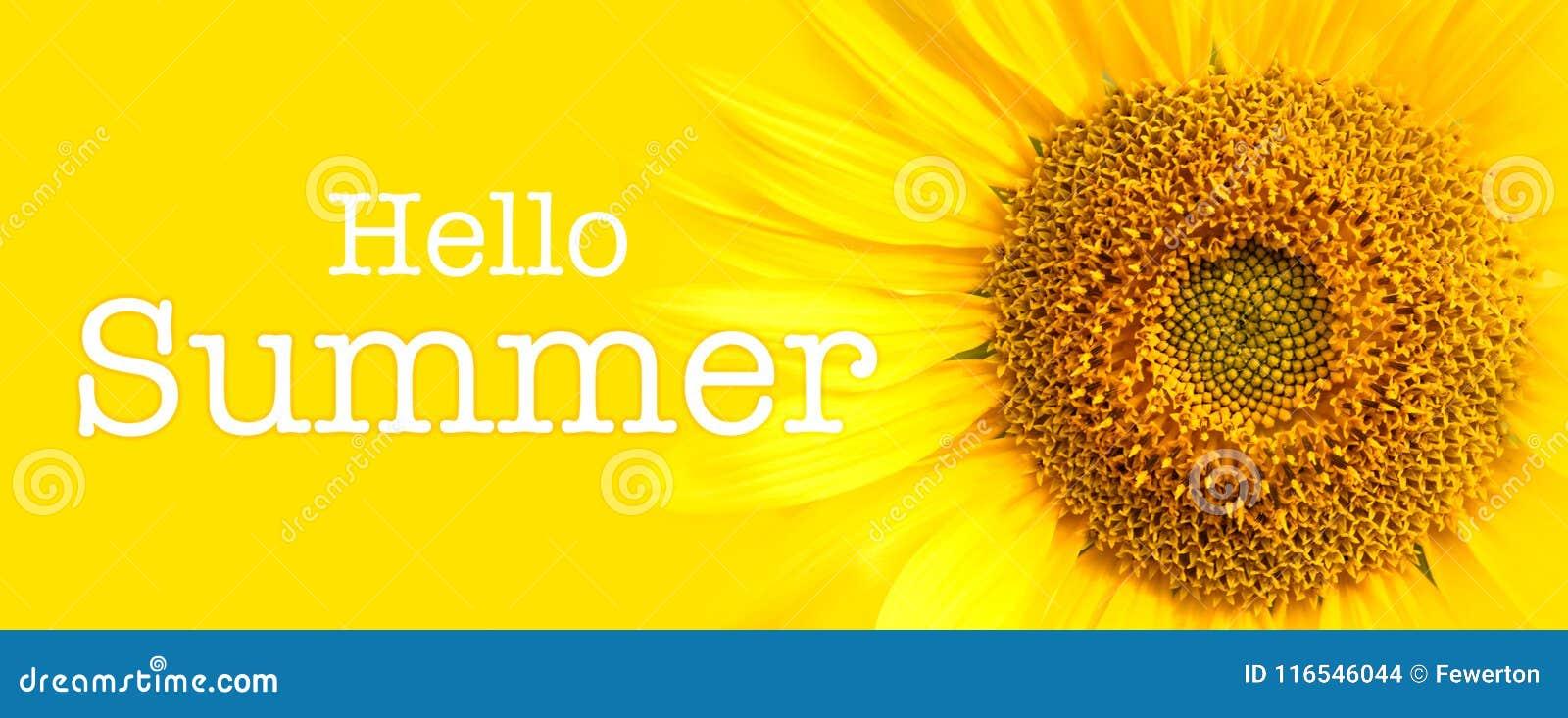 Olá! detalhes do close-up do texto e do girassol do verão no fundo amarelo da bandeira