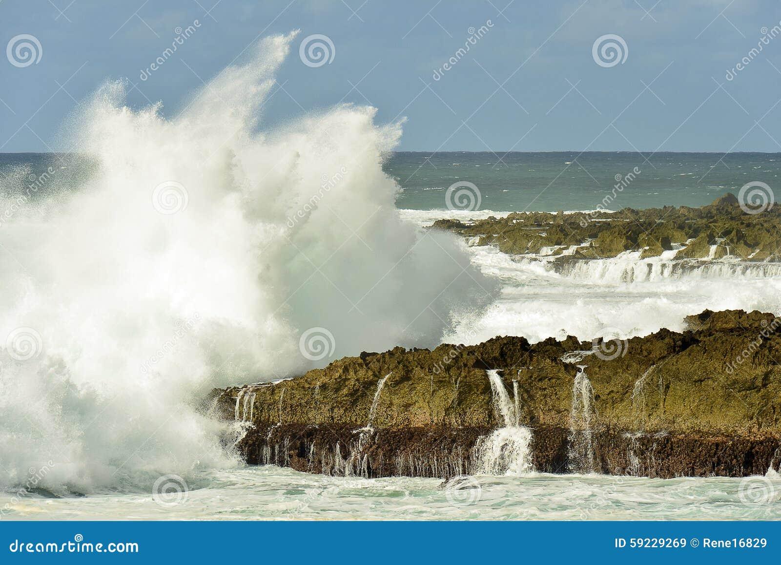 Download Ola Oceánica Pacífica Que Salpica Cerca De La Orilla Del Norte Hawaii Imagen de archivo - Imagen de orilla, potencia: 59229269