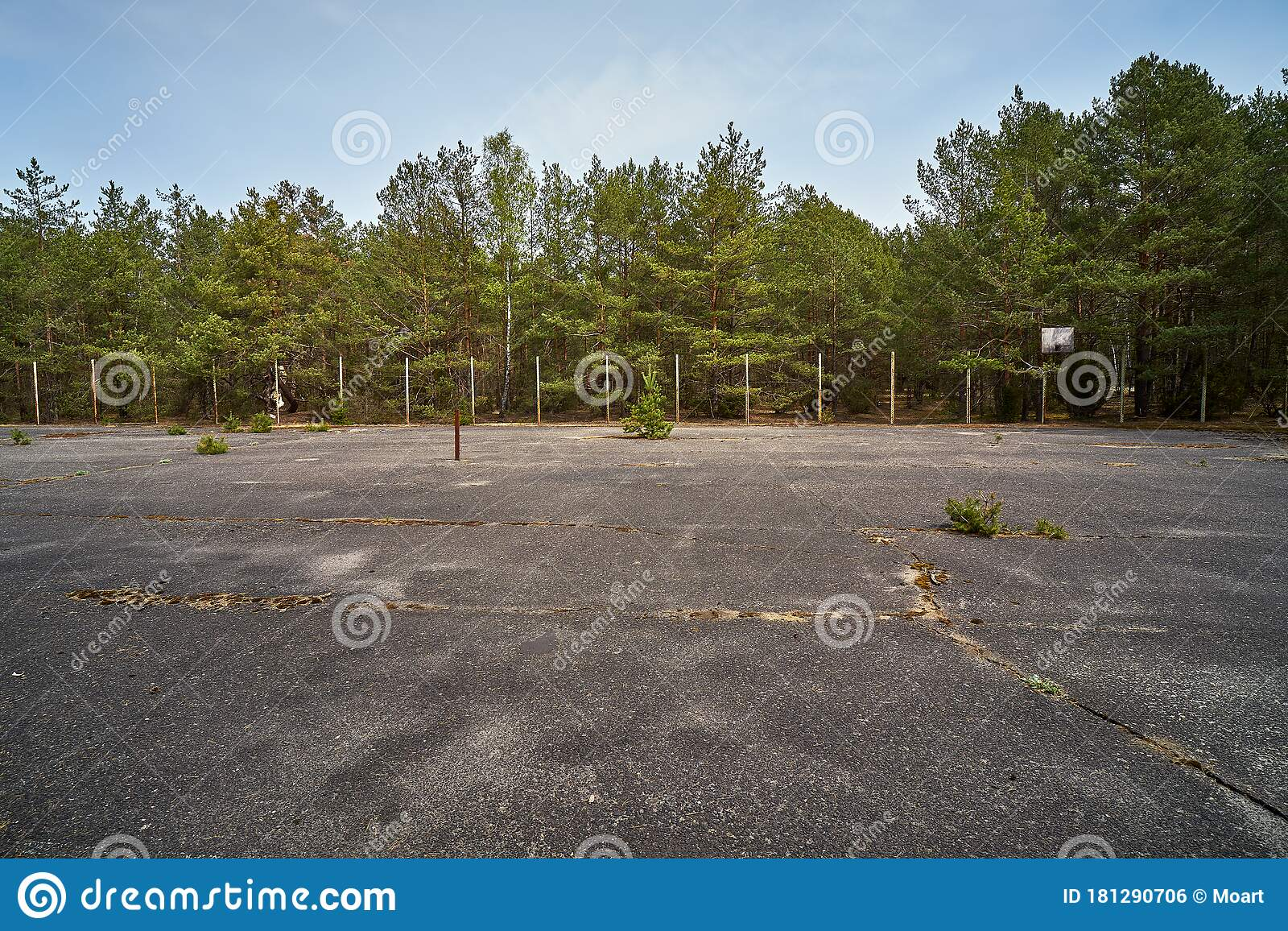 Old Abandoned Asphalt Playground In The Spring Forest Stock Photo Image Of Outdoor Concrete 181290706