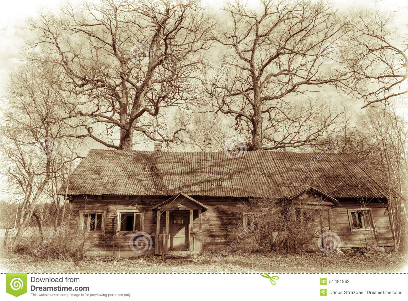 Download Old abandoned house stock image. Image of dirty, branch - 51491963