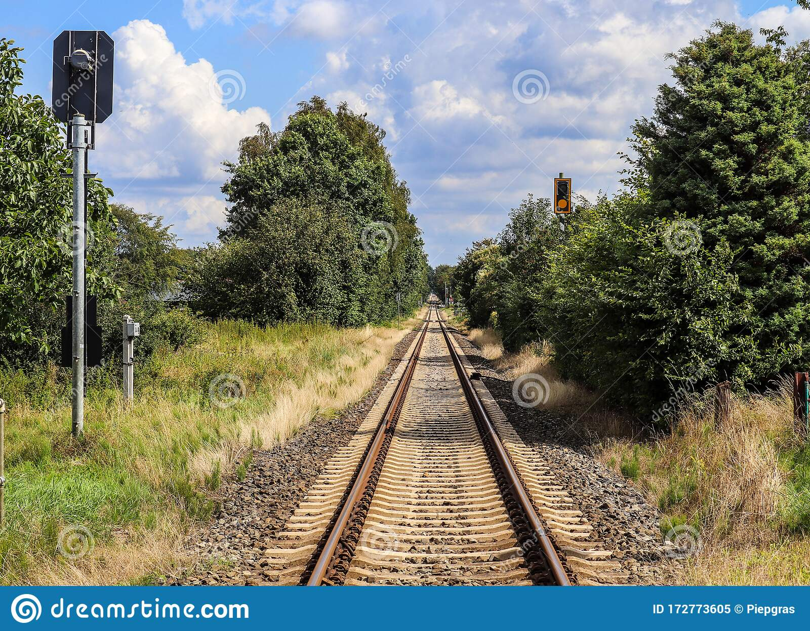 Old Abandened Train Tracks In Forest Stock Photograph