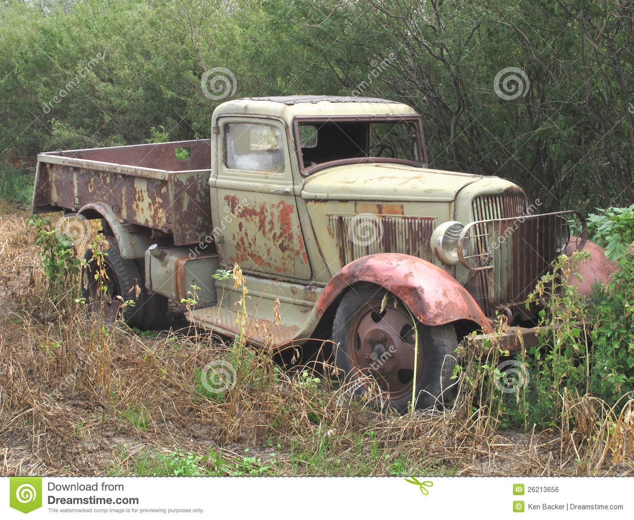 Old Abandoned Rusty Farm Truck In Bush Royalty Free Stock
