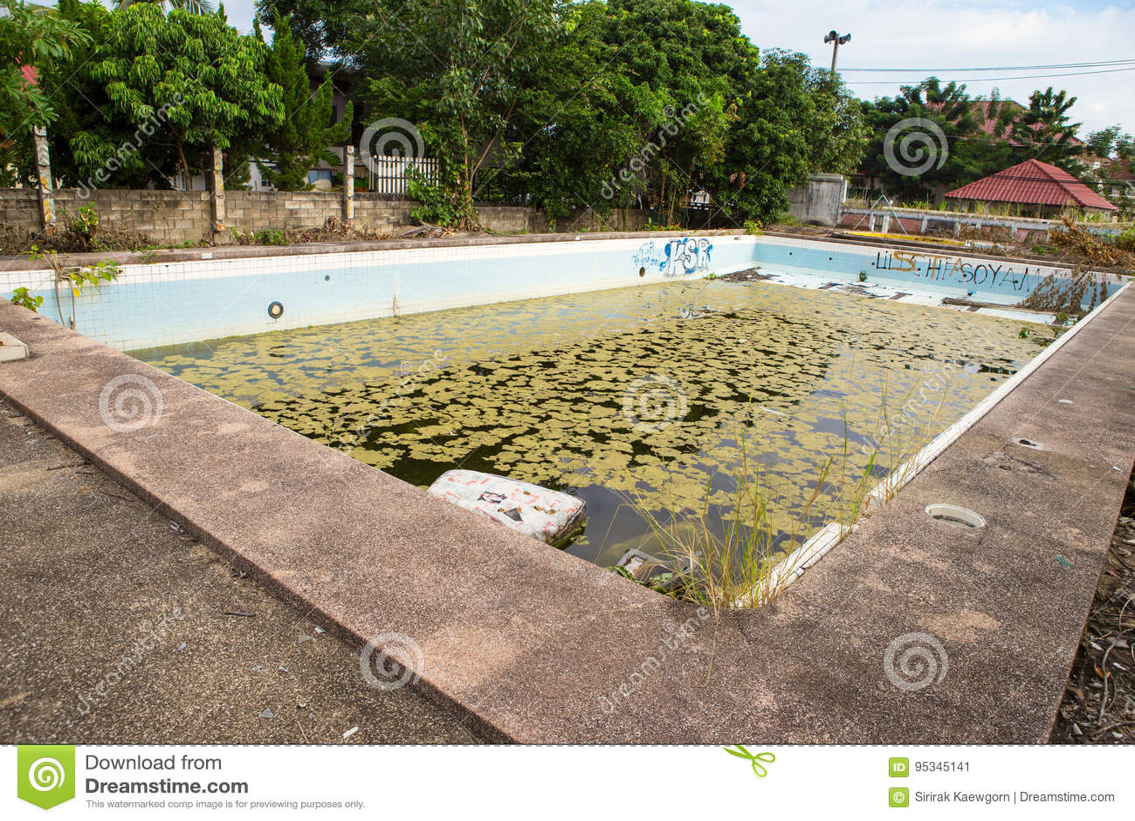 Old Abandoned Swimming Pool Stock Image Image Of Concrete Damage 95345141