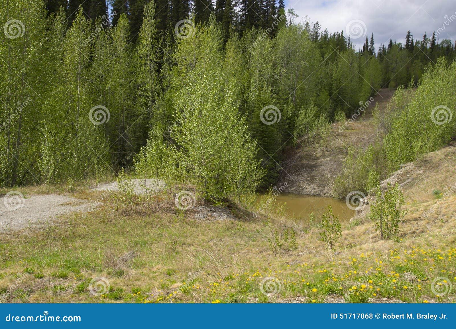 Old Alaska Highway Contact Creek