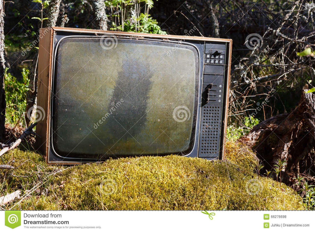 Old analog television in forest