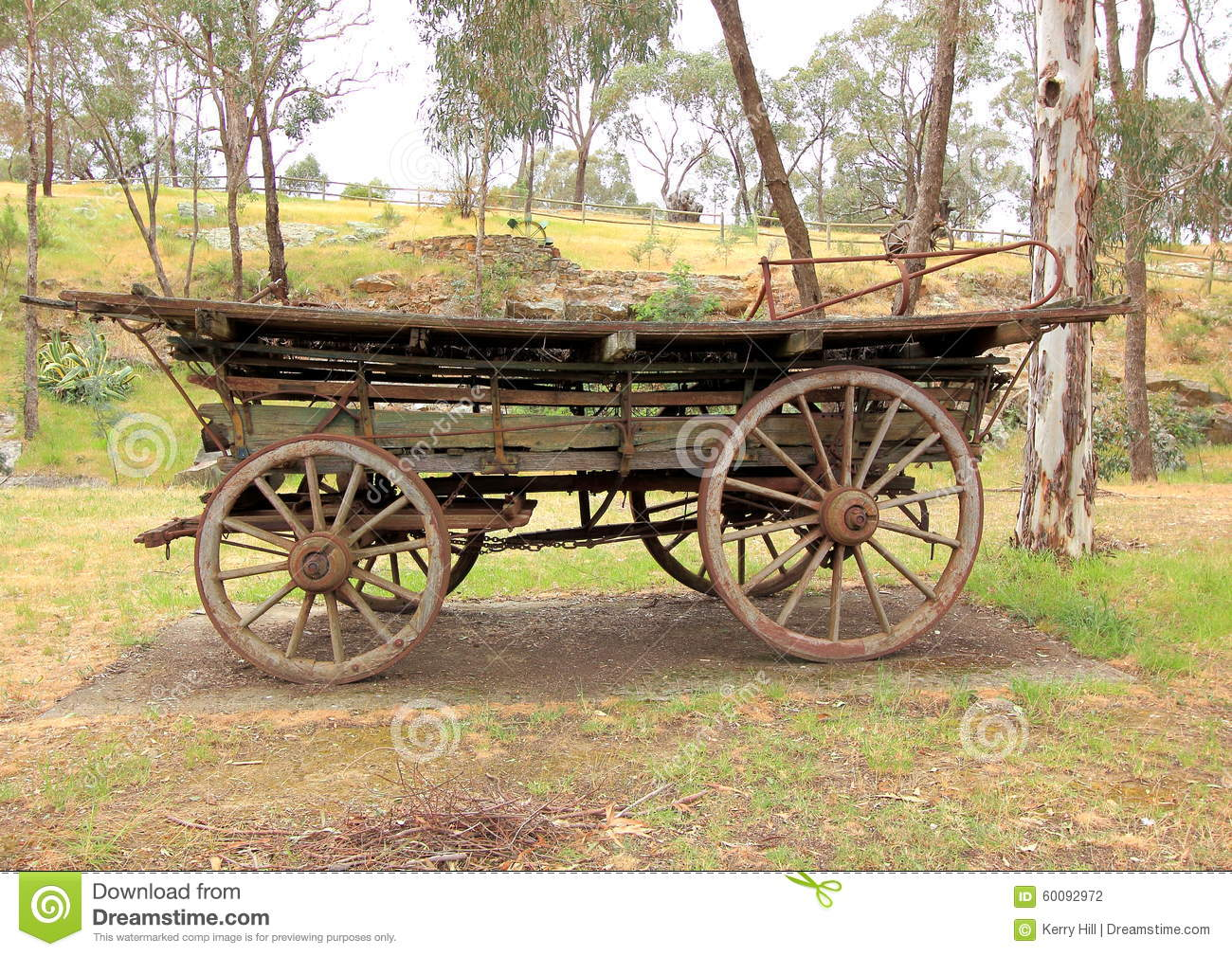 Old Antique Settlers Horse Drawn Wagon Stock Photo Image Of Drawn Trees 60092972