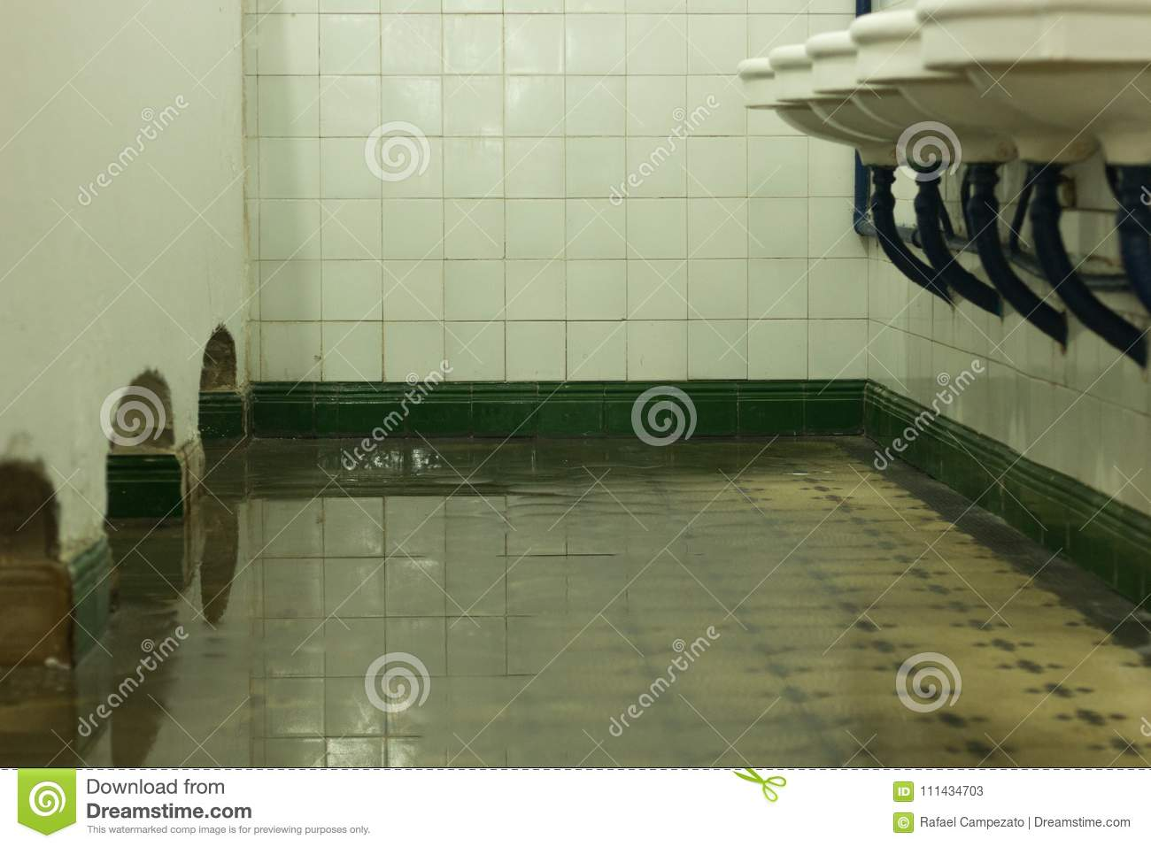 Old Architecture Bathroom Flooded