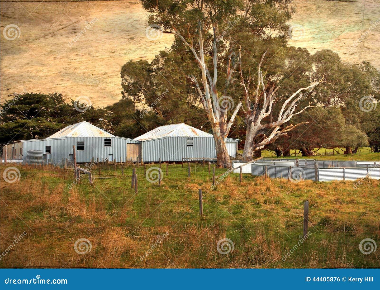 Old Australian Sheep Shearing Sheds Stock Photo Image