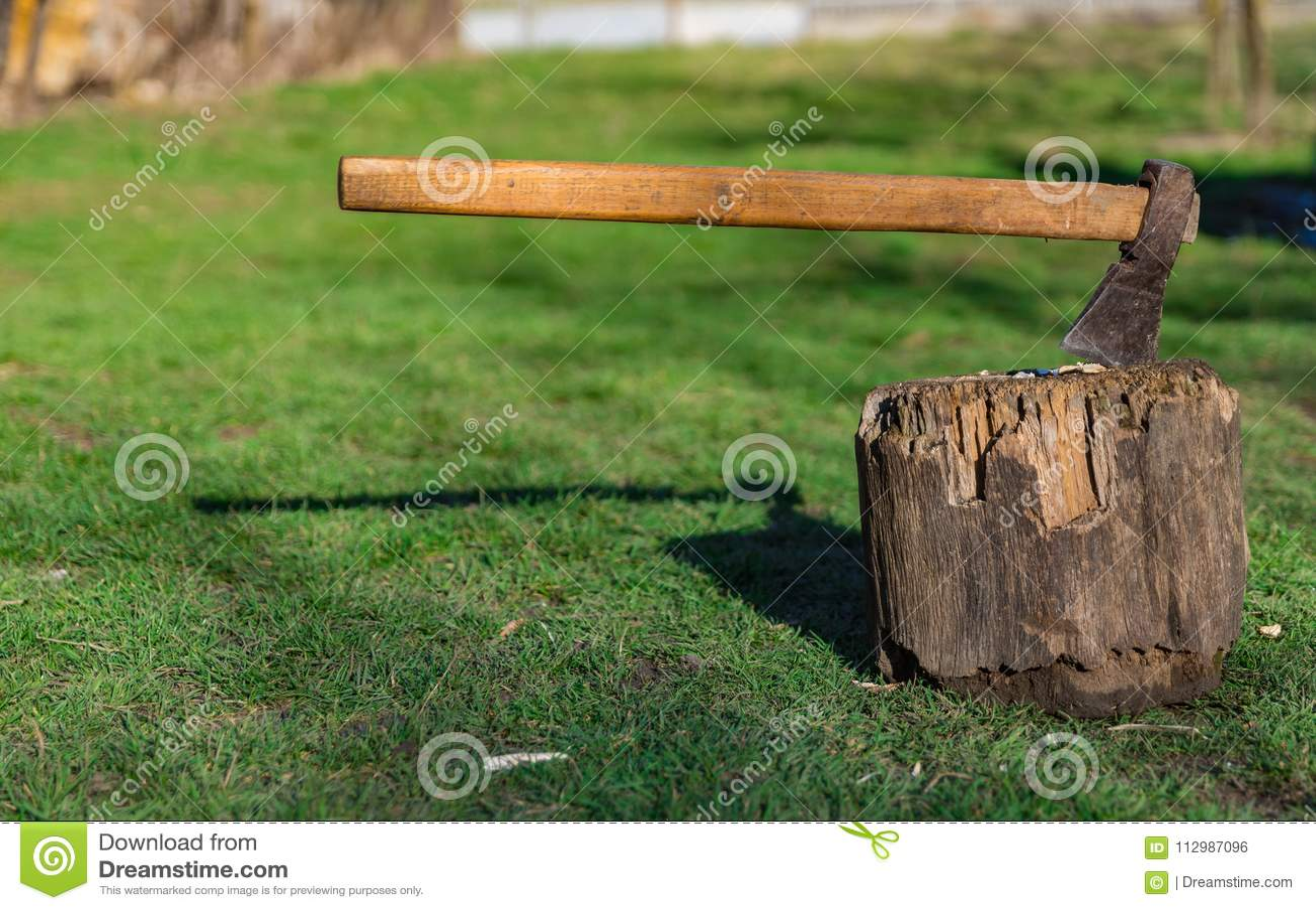 Old Axe tree stump green field