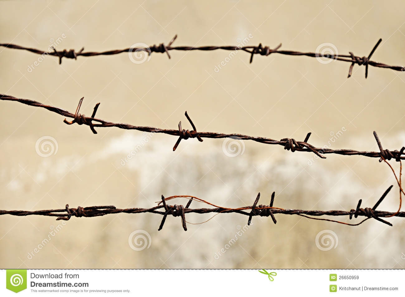 Old Barb Wire Royalty Free Stock Images Image 26650959