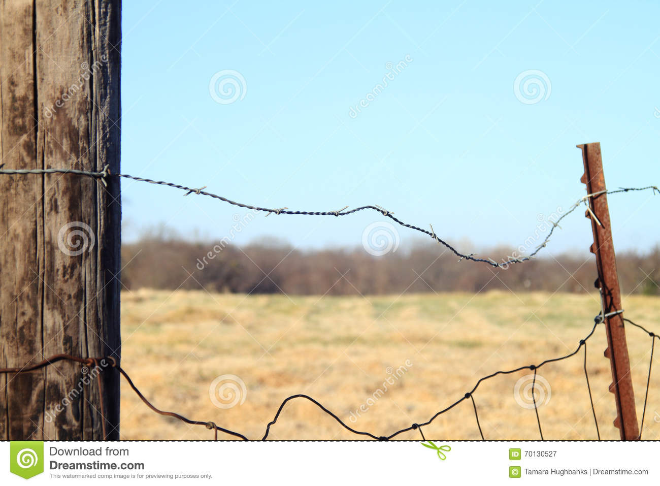 Old Wire Fence - WIRE Center •