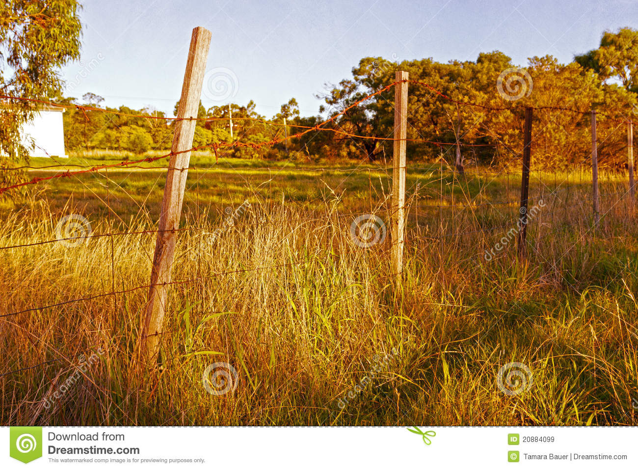 Old barbed wire fence royalty free stock images image