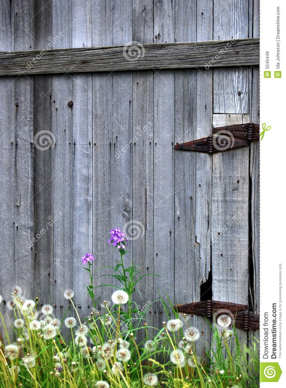 Old Barn Door And Flowers Stock Image Image Of Barn