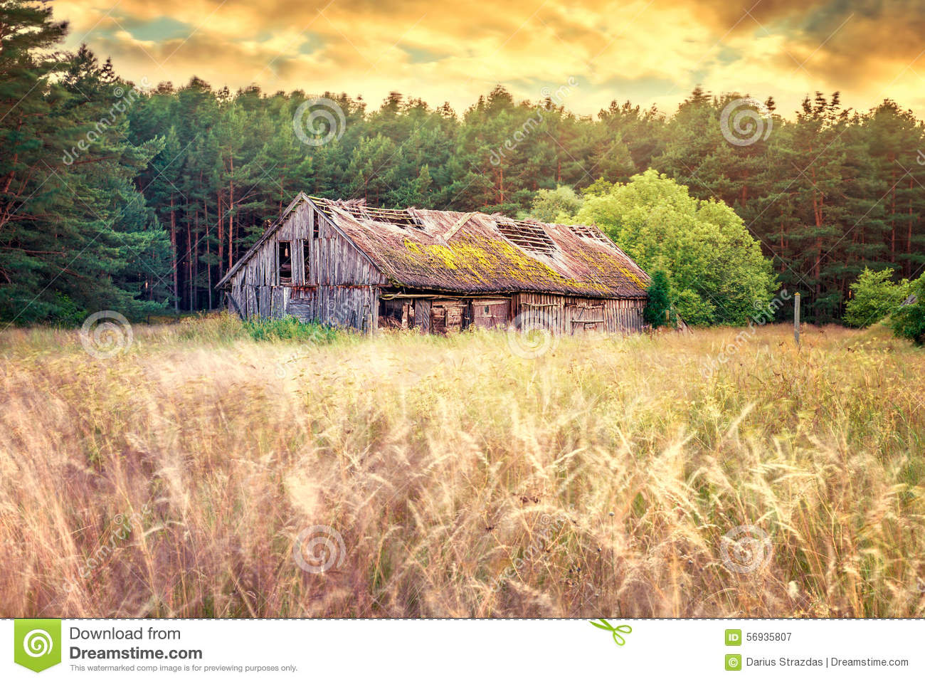 Old Barn Field Stock Image Image Of Field Shed Fields