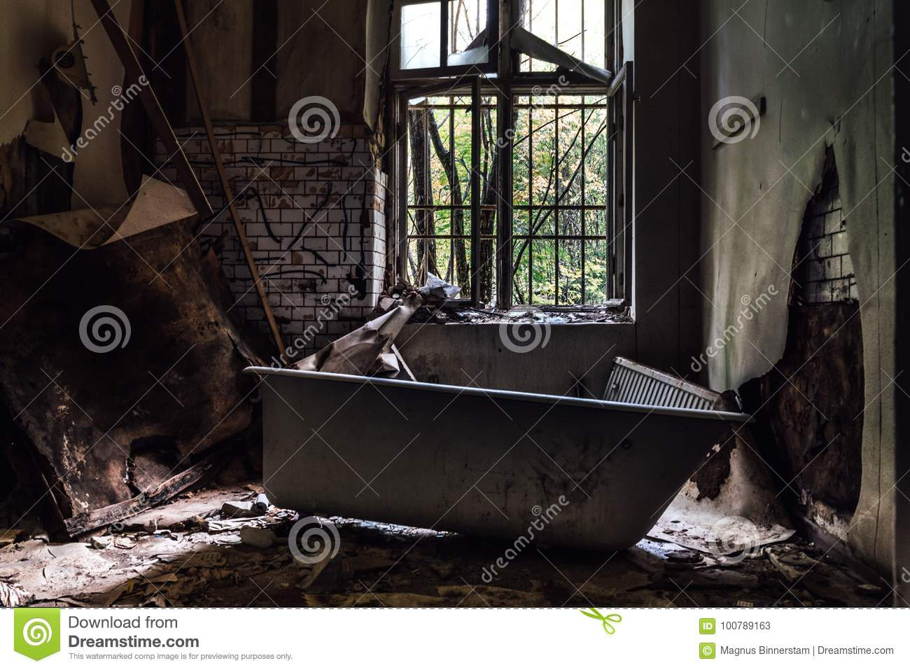 Old bathtub in a closed down mental institution in Säter Sweden