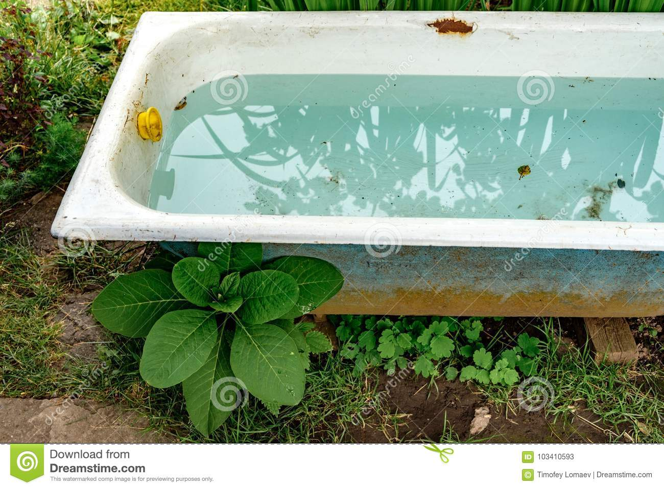 Old Bathtub Filled With Clean Water