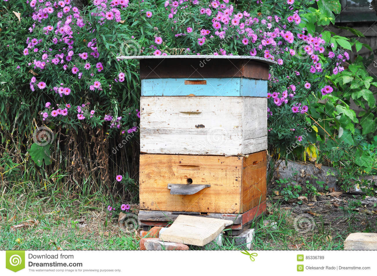 Colored Bee Hives In An Apiary Stock Image - Image of