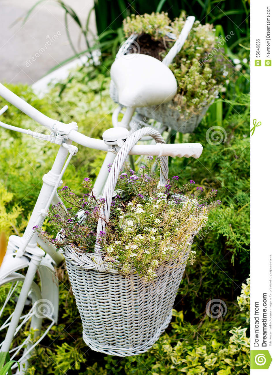 old time photo ideas - Old Bicycle Ideas For Gardening Stock Image