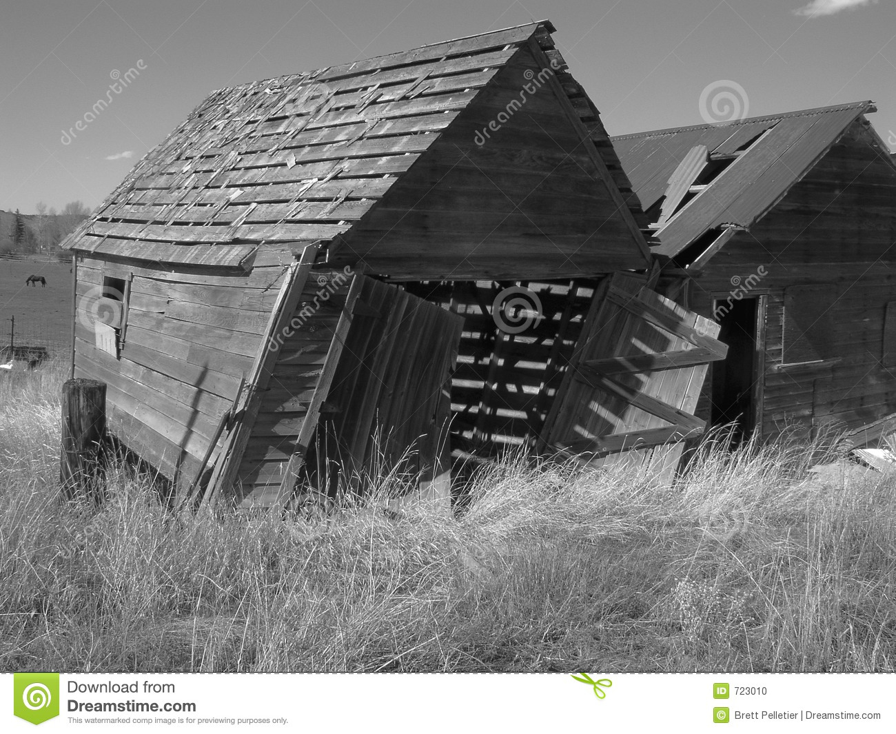 Old Black And White Barn