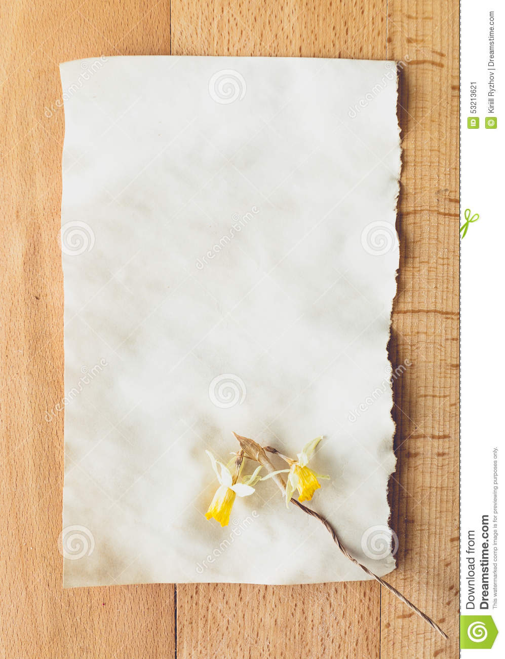 Old Blank Piece Of Paper With Dried Flower Lying On Wooden Desk