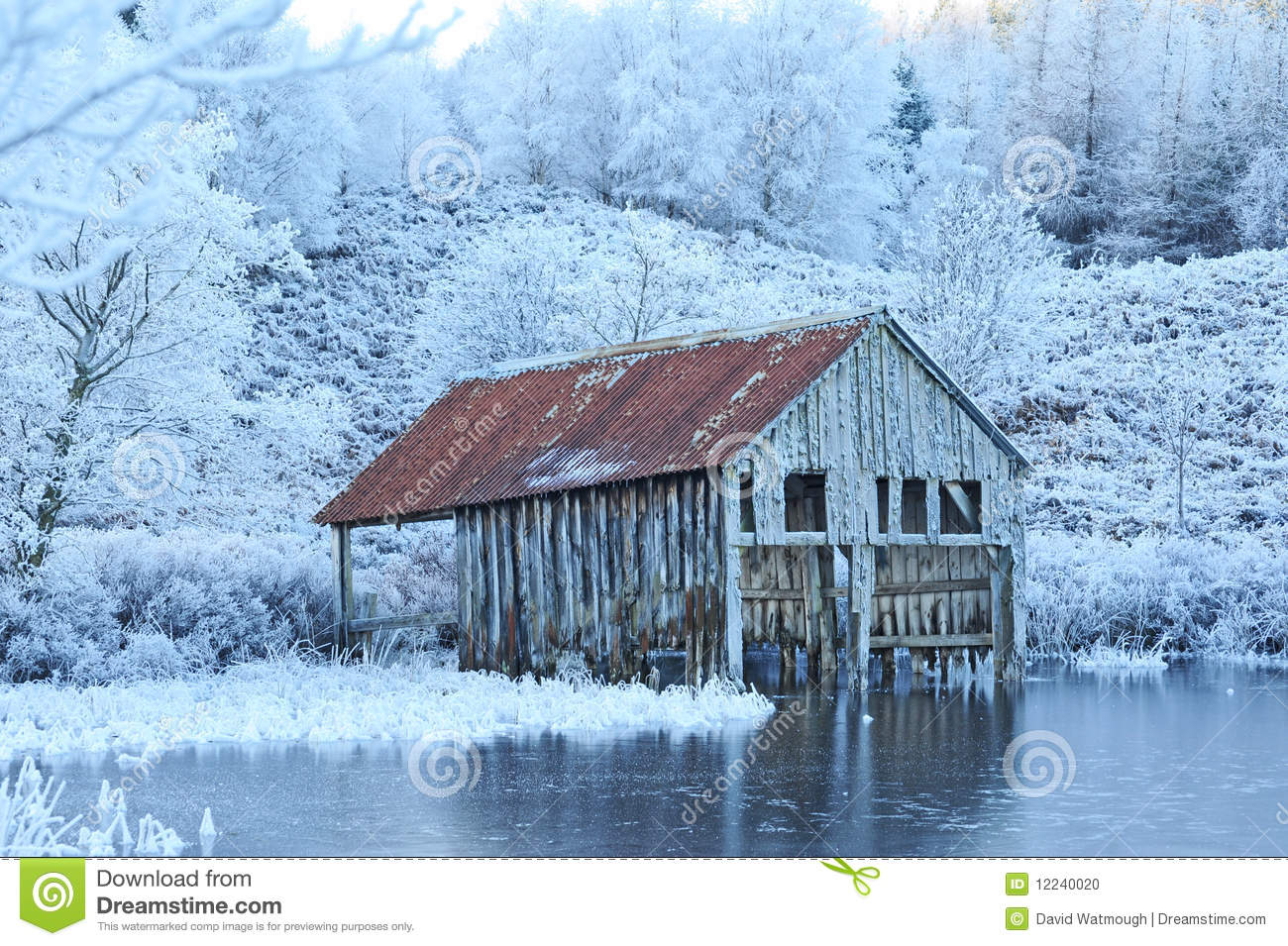 Old boat house in winter. stock photo. Image of forest ...