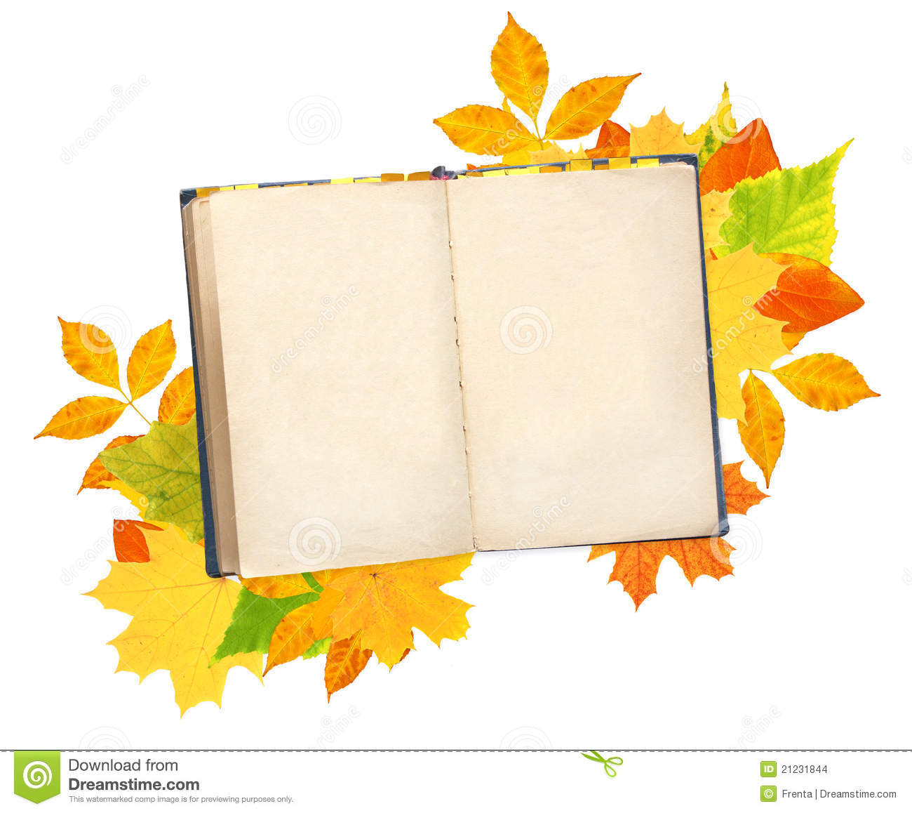 Old book and autumn leaves