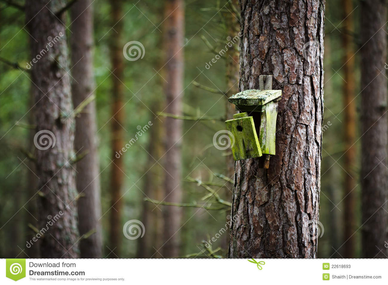 Old Broken Birdhouse In Forest Stock Photos - Image: 22618693